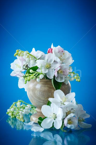 Gyönyörű virágok alma fák kék virág Stock fotó © Peredniankina