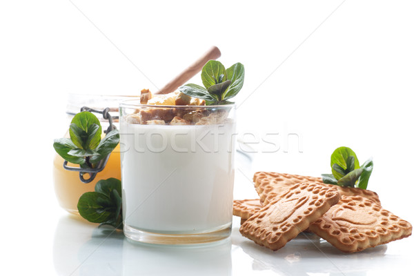 Greek yoghurt with honey and biscuits Stock photo © Peredniankina
