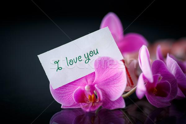 Vonal nyilatkozat szeretet fekete virágok tapéta Stock fotó © Peredniankina