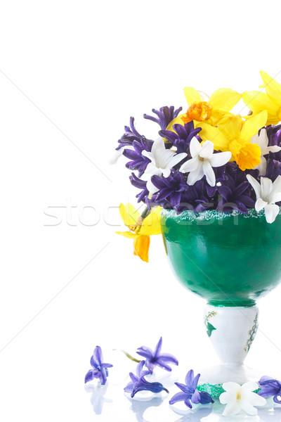 Foto stock: Jacinto · belo · flores · da · primavera · branco · páscoa · aniversário