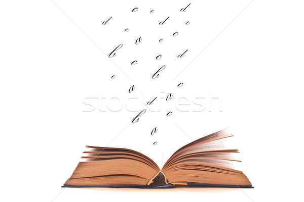book to read Stock photo © Peredniankina