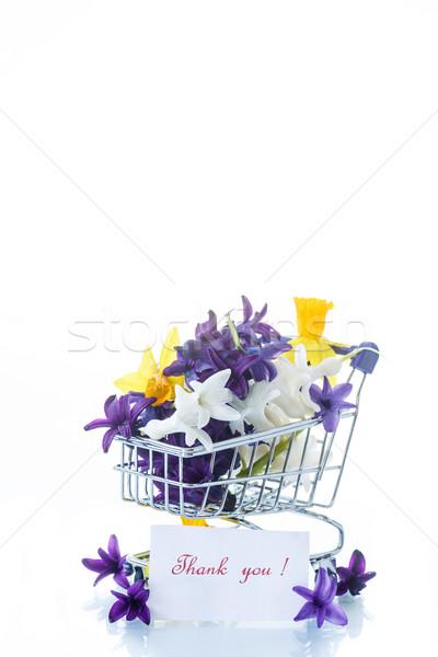 春の花 ヒヤシンス トラック 美しい 白 イースター ストックフォト © Peredniankina
