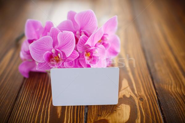 Mooie paars bloemen houten tafel voorjaar moeder Stockfoto © Peredniankina