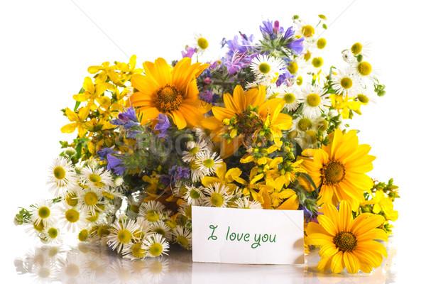 Ramo flores de verano hermosa blanco flor flores Foto stock © Peredniankina