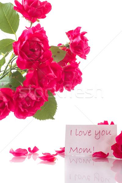 Ramo rosas rojas blanco amor naturaleza hoja Foto stock © Peredniankina
