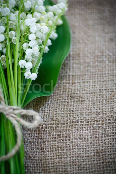 bouquet of lily of the valley flowering Stock photo © Peredniankina