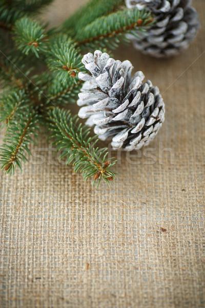 クリスマスツリー 古い 黄麻布 テクスチャ ツリー パーティ ストックフォト © Peredniankina
