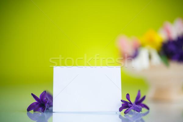 Belo buquê flores da primavera verde primavera jardim Foto stock © Peredniankina