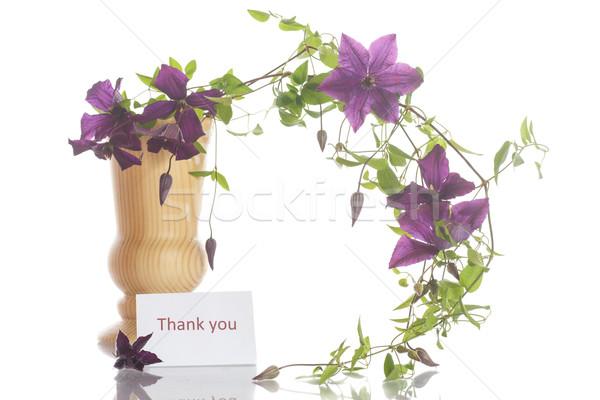 Gyönyörű virágzó virág tavasz természet terv Stock fotó © Peredniankina