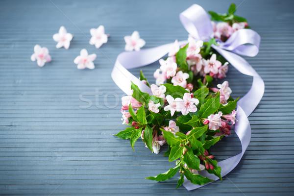 Stock photo: Weigel beautiful pink flowers