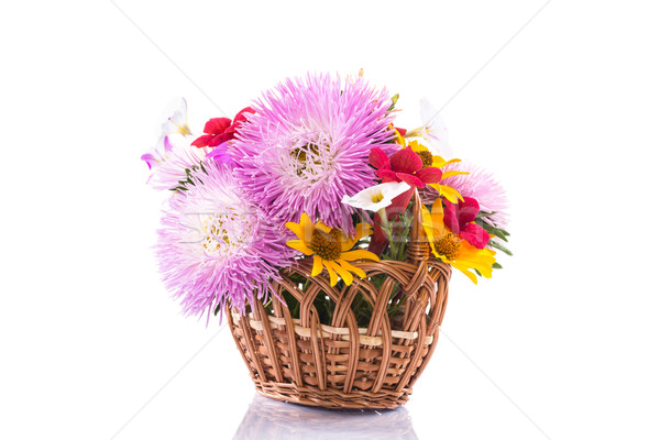 bouquet of asters  Stock photo © Peredniankina
