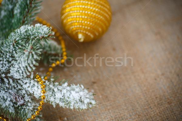 クリスマスツリー 表 ツリー パーティ 幸せ ストックフォト © Peredniankina