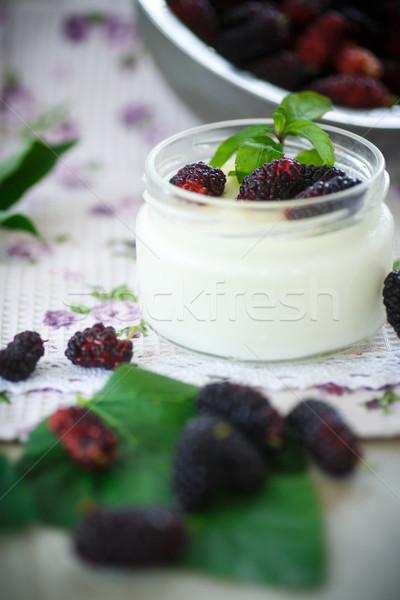 yogurt with mulberry Stock photo © Peredniankina
