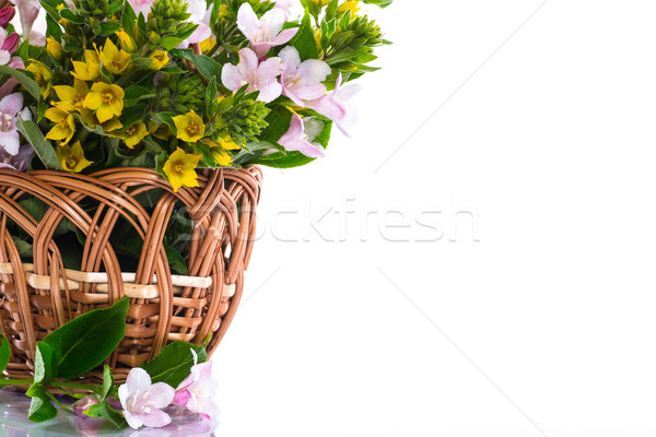 beautiful summer bouquet in a wicker basket Stock photo © Peredniankina