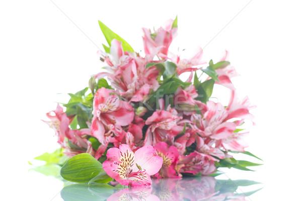 Güzel buket çiçekler çiçek bahar bahçe Stok fotoğraf © Peredniankina