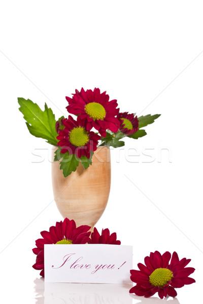 Gyönyörű lila krizantém nyilatkozat szeretet esküvő Stock fotó © Peredniankina
