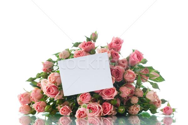 Rosa rosas hermosa ramo blanco flor Foto stock © Peredniankina