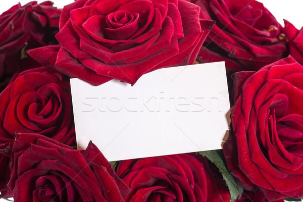 Gyönyörű rózsák virág szeretet rózsa űr Stock fotó © Peredniankina