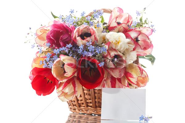 Mooie boeket tulpen witte voorjaar verjaardag Stockfoto © Peredniankina