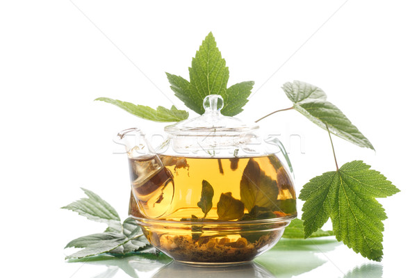 medicinal tea from the leaves of currants Stock photo © Peredniankina