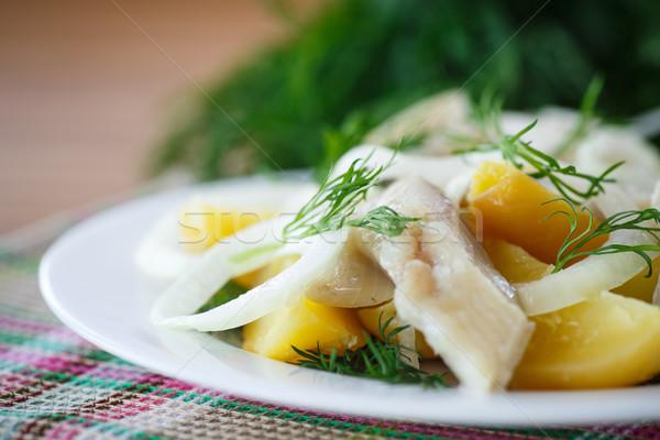 Foto stock: Batatas · jantar · branco · comer