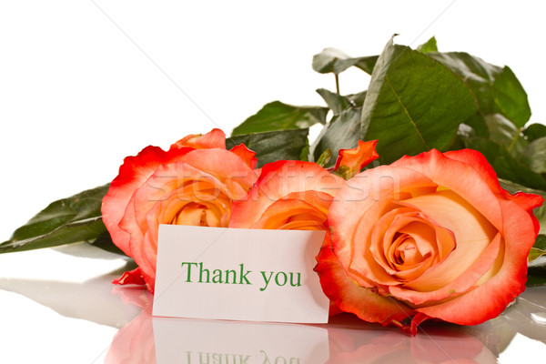 Teşekkürler güller beyaz çiçek sevmek Stok fotoğraf © Peredniankina