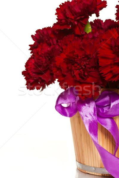 carnation flowers Stock photo © Peredniankina