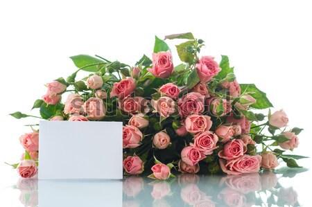 Roze rozen mooie boeket witte bloem Stockfoto © Peredniankina