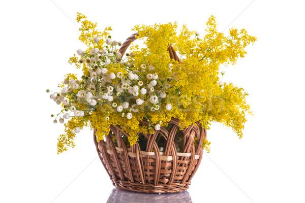 Summer bouquet of wild flowers Stock photo © Peredniankina