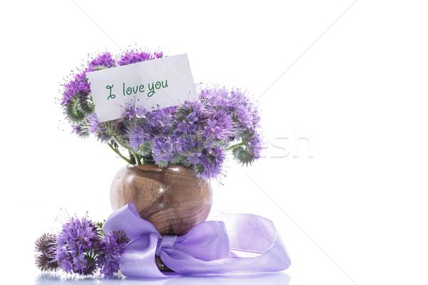 Boeket bloemen Blauw witte natuur achtergrond Stockfoto © Peredniankina
