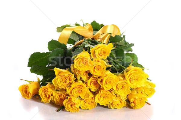 ストックフォト: 黄色 · バラ · 美しい · バラ · 白 · 花