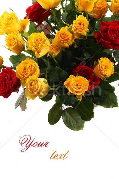 ストックフォト: 黄色 · 赤いバラ · 白 · 花 · 結婚式 · バラ