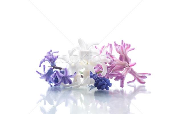 Gyönyörű virágcsokor tavaszi virágok fehér tavasz szeretet Stock fotó © Peredniankina