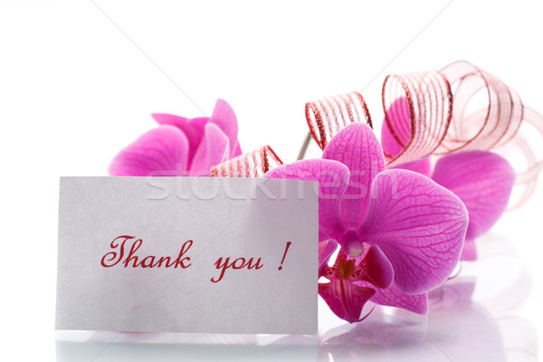 Stock photo: orchid flowers with gratitude