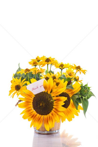 Boeket zonnebloemen dankbaarheid witte natuur achtergrond Stockfoto © Peredniankina