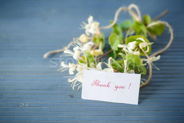 Branco flores tabela gratidão madeira jardim Foto stock © Peredniankina