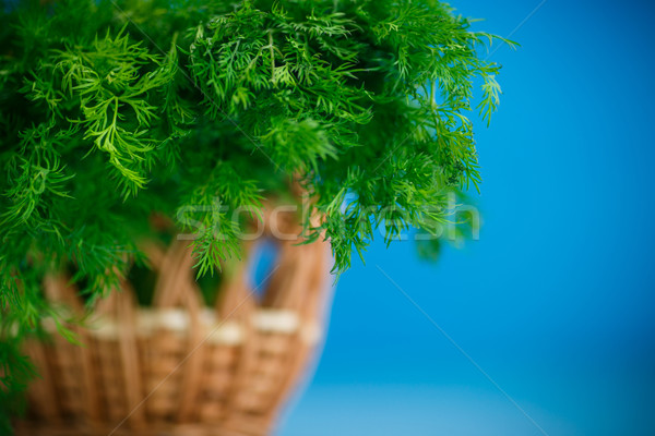 fragrant fresh dill in a basket  Stock photo © Peredniankina