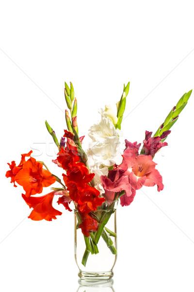 Stock foto: Rot · weiß · Vase · Blumen · Blatt · Geburtstag