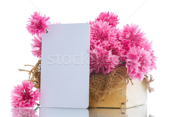 bright bouquet of carnations  Stock photo © Peredniankina