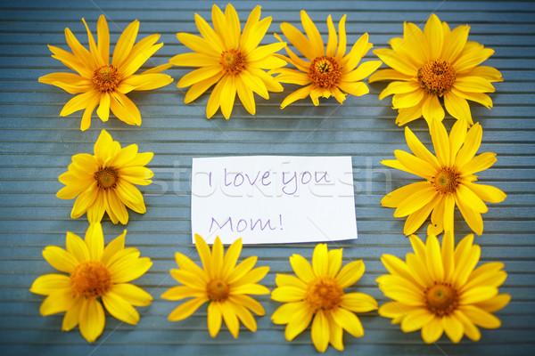 Bos Geel daisy bloemen houten tafel bloem Stockfoto © Peredniankina