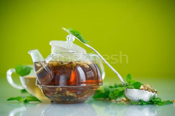 Chá verde vidro pote verde flor médico Foto stock © Peredniankina