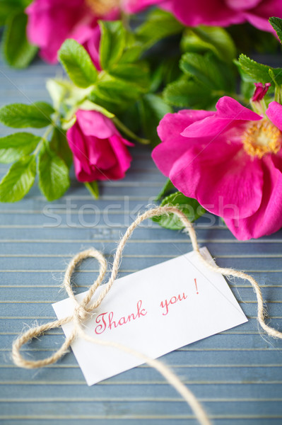 Fleurs rose hanches table en bois bleu bois Photo stock © Peredniankina
