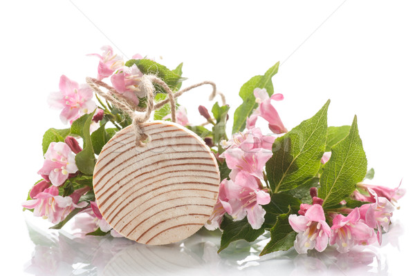 bouquet of pink flowers  Stock photo © Peredniankina