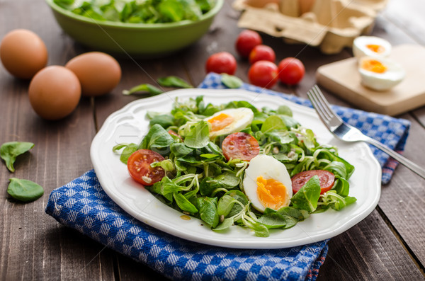 Stok fotoğraf: Marul · salata · yumurta · domates · bal · hardal