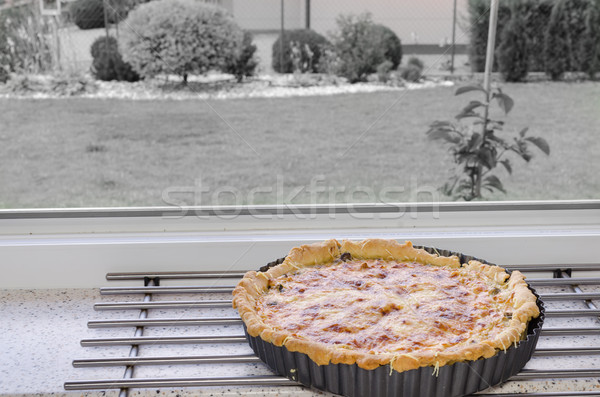 Frans ui prei champignons eigengemaakt kip Stockfoto © Peteer