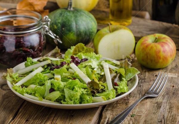 サラダ 単純な ナッツ リンゴ リンゴ ストックフォト © Peteer