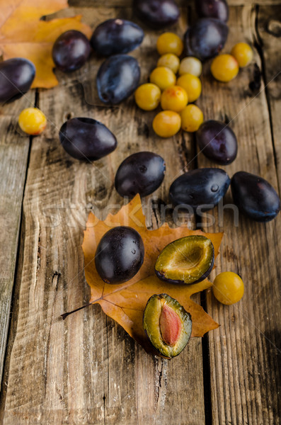 Freshly picked and washed plums Stock photo © Peteer
