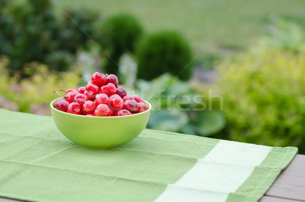 Lédús cseresznye kert ízlés fa tavasz Stock fotó © Peteer