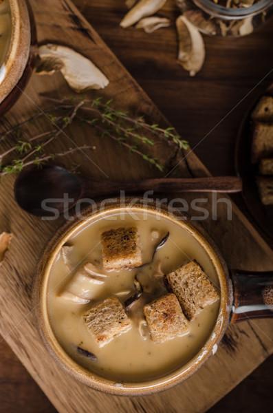 Stock fotó: Rusztikus · gombák · leves · cseh · erdő · friss