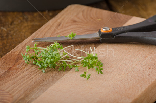 Home grown microgreens, watercress, no chemicalsScrambled eggs with watercress, french toast Stock photo © Peteer